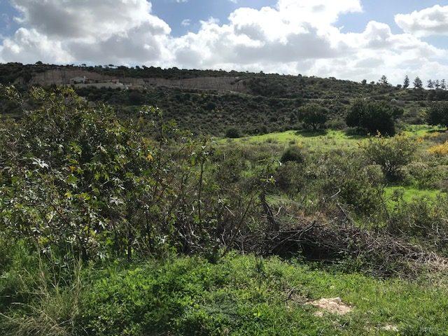 Building land – Peyia _-P0317